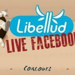 Live Facebook d'une journée chez Libellud le 22 mai