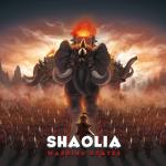 Le labo des jeux parle de Shaolia sur KS le 05 Juin prochain