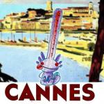 le buzzomètre cannois de cette année, les votes démarrent le vendredi 21 février