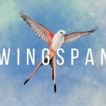 Wingspan au printemps sur Nintendo Switch