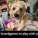 Le top 5 des jeux de société à jouer avec son chien