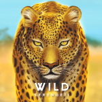 Wild Serengeti : le prochain Bad Comet sur KS en Juillet 2021 / 1–4 joueurs, 14 ans et +, 45–120 Min de Gunho Kim illustré par Hani Chang, Sophia Kang